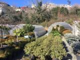 Setlere kiralık Botanik Bahçesi